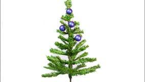 Pare el movimiento, bolas del ` s del Año Nuevo en un árbol del Año Nuevo almacen de video