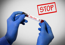 Pare el virus del zika Foto de archivo libre de regalías