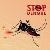 Pare a febre de dengue com sangue de sugação do mosquito no projeto do vetor da pele ilustração stock