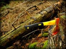 Pare la tala de árboles Imagen de archivo libre de regalías
