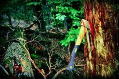 Pare la tala de árboles Imagen de archivo