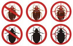 Pare las muestras del chinche Sistema de muestras del control de parásito de insecto Ilustración del vector ilustración del vector