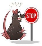 Pare las ratas Imagenes de archivo