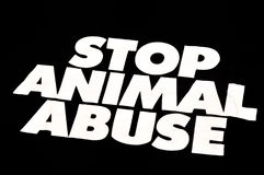 Pare o abuso animal imagem de stock