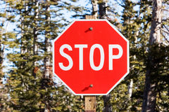 Pare o sinal foto de stock