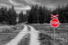 Pare o sinal no cruzamento de estrada de ferro na natureza fotografia de stock