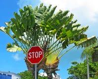 Pare, viajante! Imagem de Stock Royalty Free