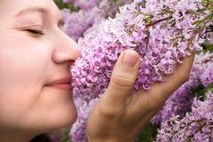 Pare y huela las lilas Imágenes de archivo libres de regalías