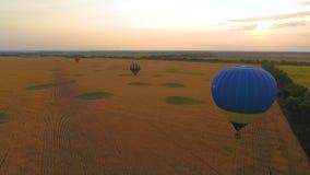Parecchi aerostati che sorvolano i campi, programma divertente, amenità della natura video d archivio