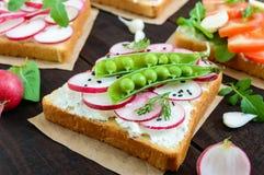 Parecchi generi di panini con le verdure: ravanello, pomodori, cetriolo, rucola su pane tostato croccante Fotografia Stock Libera da Diritti
