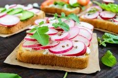 Parecchi generi di panini con le verdure: ravanello, pomodori, cetriolo, rucola su pane tostato croccante Immagine Stock Libera da Diritti