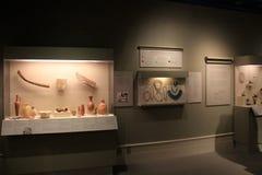 Parecchi oggetti imballati vetro nell'estesa mostra egiziana, nell'istituto di storia e nell'arte, Albany, miagolio York, 2016 Fotografia Stock Libera da Diritti