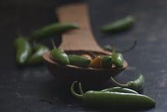 Parecchi peperoncini rossi su un cucchiaio di legno Fotografia Stock Libera da Diritti