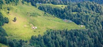 Parecchie casette sul pendio della catena montuosa verde, circondato dalla foresta densa Krasnaya Polyana, Soci immagine stock libera da diritti