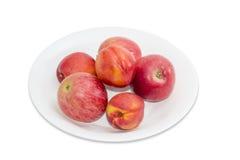 Parecchie mele e nettarine rosse su un piatto bianco Fotografia Stock Libera da Diritti
