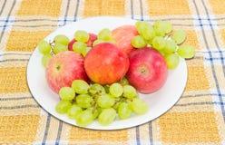 Parecchie mele, nettarine ed uva su un piatto bianco Fotografia Stock