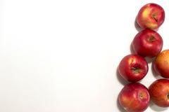 Parecchie mele su fondo bianco Fotografia Stock