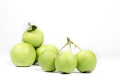 Parecchie piccole mele verdi su varietà bianca e non commerciale Fotografie Stock Libere da Diritti