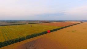 Parecchio mongolfiera che sorvola i vasti campi, ricchezze agricole di paese archivi video