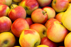 Parecchio rosso con le mele gialle Fotografia Stock Libera da Diritti