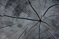 Pared agrietada de madera Imagen de archivo libre de regalías