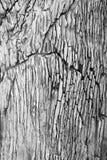 Pared agrietada del granito Foto de archivo libre de regalías