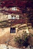Pared antigua con las enredaderas en ella en el pueblo pintoresco de Eze Imagenes de archivo