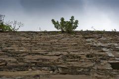 Pared antigua de un castillo de Khotyn Imagenes de archivo