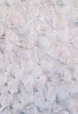 Pared blanca con las sombras grises Imagen de archivo