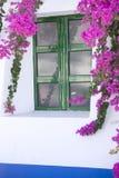 Pared blanca con los flowres violetas Foto de archivo libre de regalías