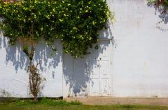 Pared blanca de la casa vieja con la puerta Imágenes de archivo libres de regalías
