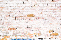 Pared blanca del ladrillo viejo antiguo con el musgo Textura del ladrillo de la pared vieja Fotografía de archivo libre de regalías