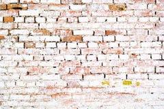 Pared blanca del ladrillo viejo antiguo con el musgo Textura del ladrillo de la pared vieja Foto de archivo