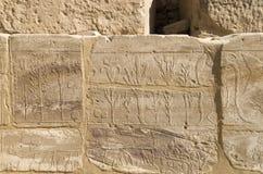 Pared con el catálogo ilustrado tallado de los animales y de las plantas exóticos de Asia en el templo de Karnak, Luxor, Egipto foto de archivo