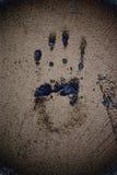 Pared con la palma Foto de archivo libre de regalías