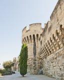 Pared con las torres y puerta en Avignon Francia fotos de archivo