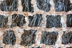 Pared con los ladrillos negros en Oahu Hawaii imagen de archivo