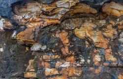 Pared costera de piedra natural erosionada en Kassiopi, Corfú, Grecia Imágenes de archivo libres de regalías