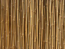 Pared de bambú Fotos de archivo