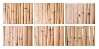 Pared de bambú Imagen de archivo libre de regalías