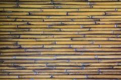 Pared de bambú Fotografía de archivo libre de regalías