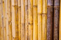 Pared de bambú Imagen de archivo