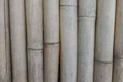 Pared de bambú Fotografía de archivo