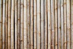 Pared de bambú vieja Fotografía de archivo libre de regalías
