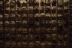 Pared de cráneos Fotografía de archivo libre de regalías