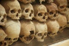 Pared de cráneos humanos viejos fotos de archivo libres de regalías