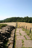 Pared de Hadrian Imagenes de archivo