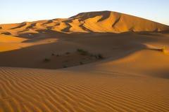 Pared de la arena del ergio Chebbi Foto de archivo libre de regalías