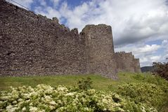 Pared de la ciudad de Conwy Imágenes de archivo libres de regalías