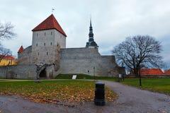 Pared de la ciudad y torres de Tallinn vieja Fotos de archivo libres de regalías